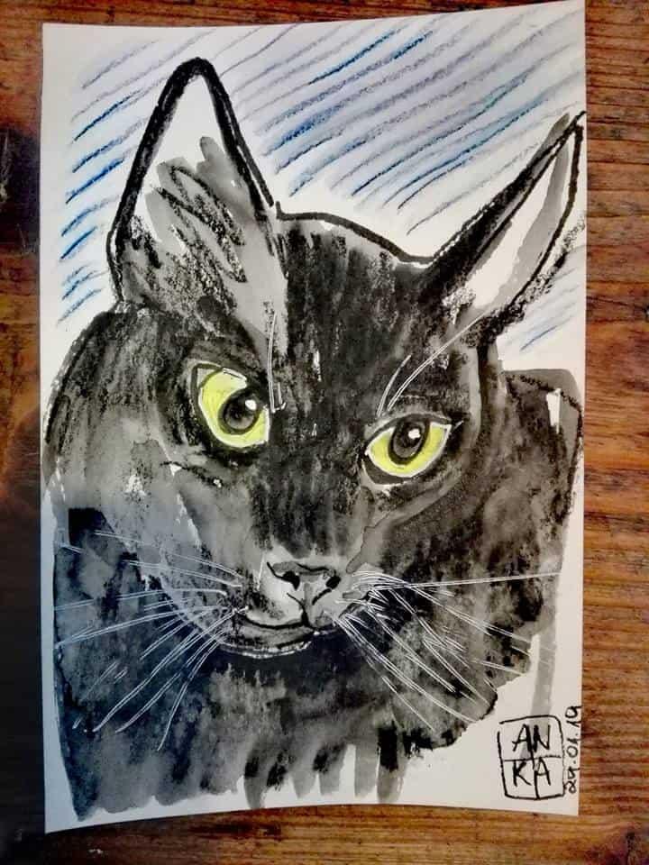 Jill Ackiron pet sketch