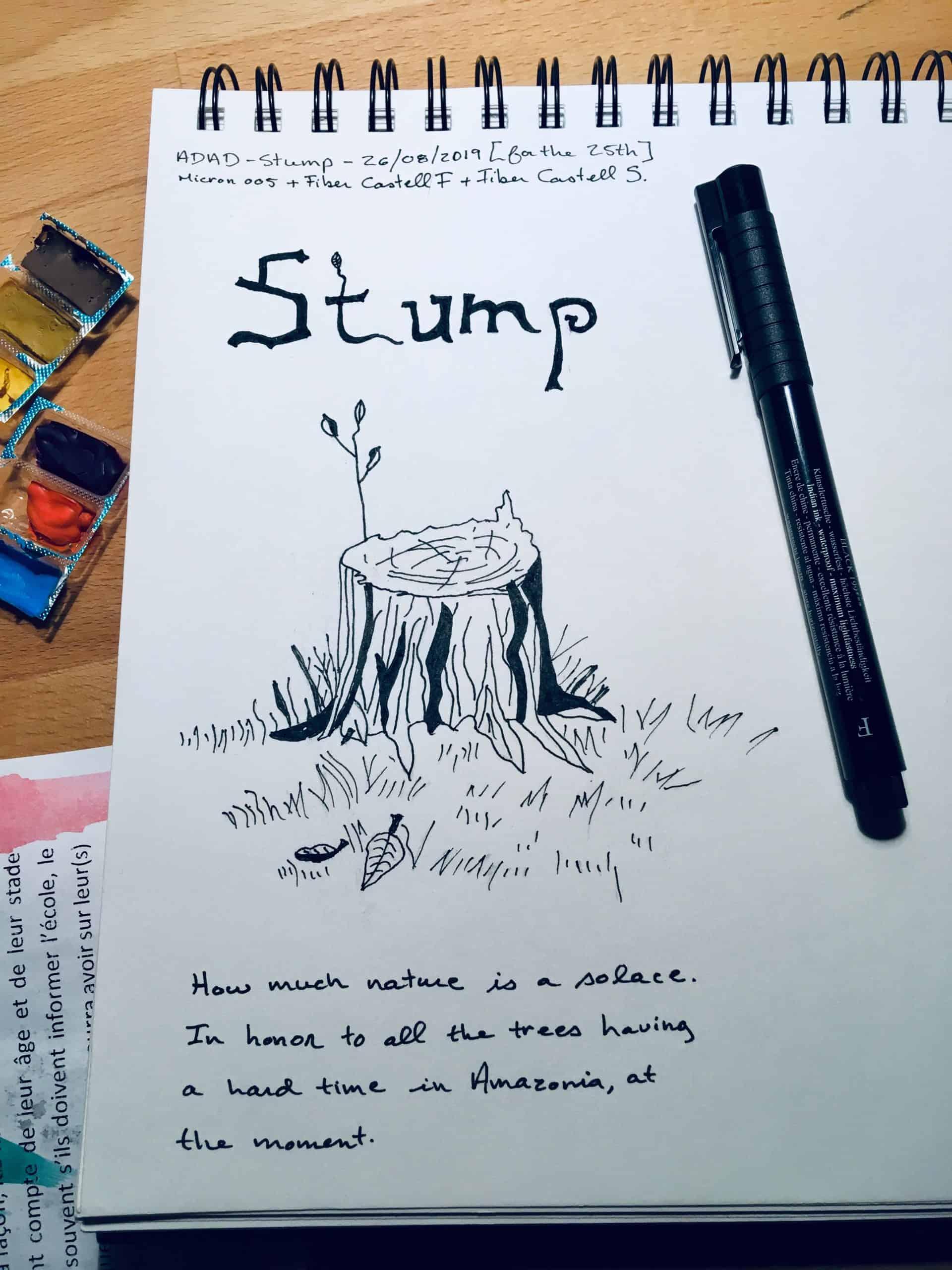 Melanie Mercuri drawing book