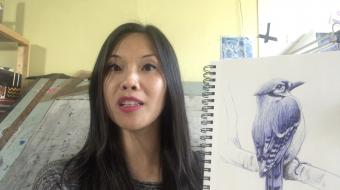 How to draw realistic birds 2
