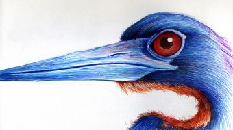 Long Necked (Blue with Red Eyes)__