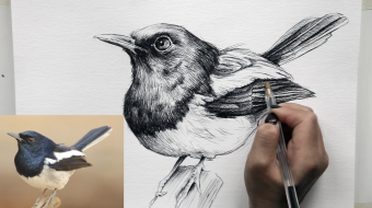 Step-by-step drawing techniques 2